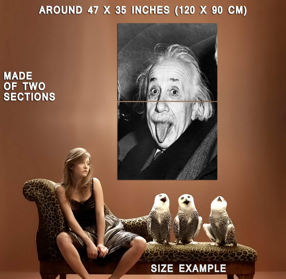 73251-Albert-Einstein-Tongue-Out-Wall-Print-Poster-Affiche