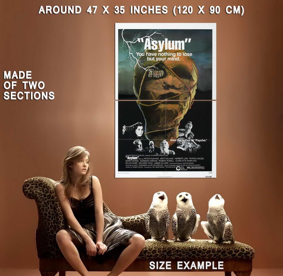 73968-Asylum-Movie-2005-Thriller-Drama-Wall-Print-Poster-Affiche
