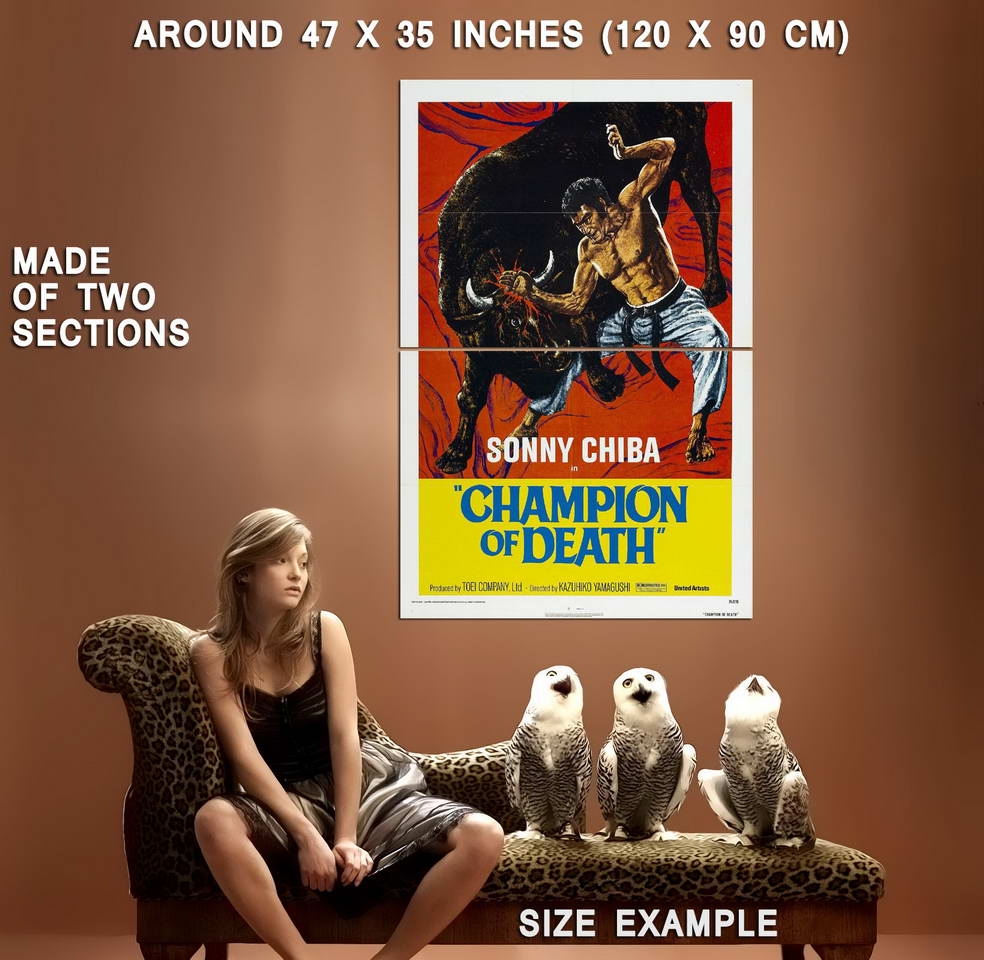 74162-CHAMPION-OF-DEATH-Movie-Kung-Fu-Wall-Print-Poster-Affiche