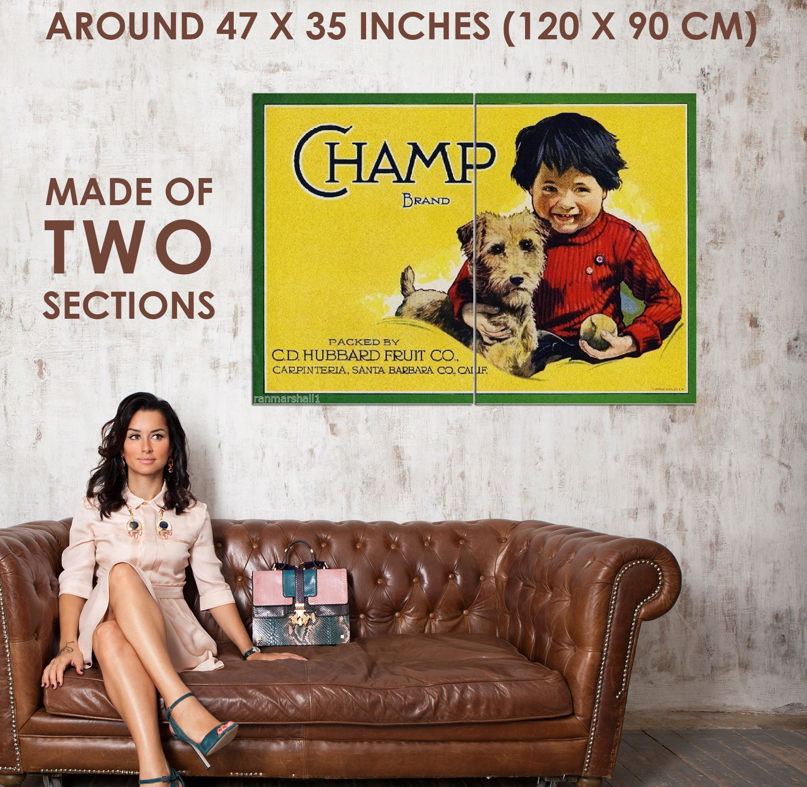 94937 Carpinteria Champ Airedale Terrier Puppy Lemon Decor WALL ...