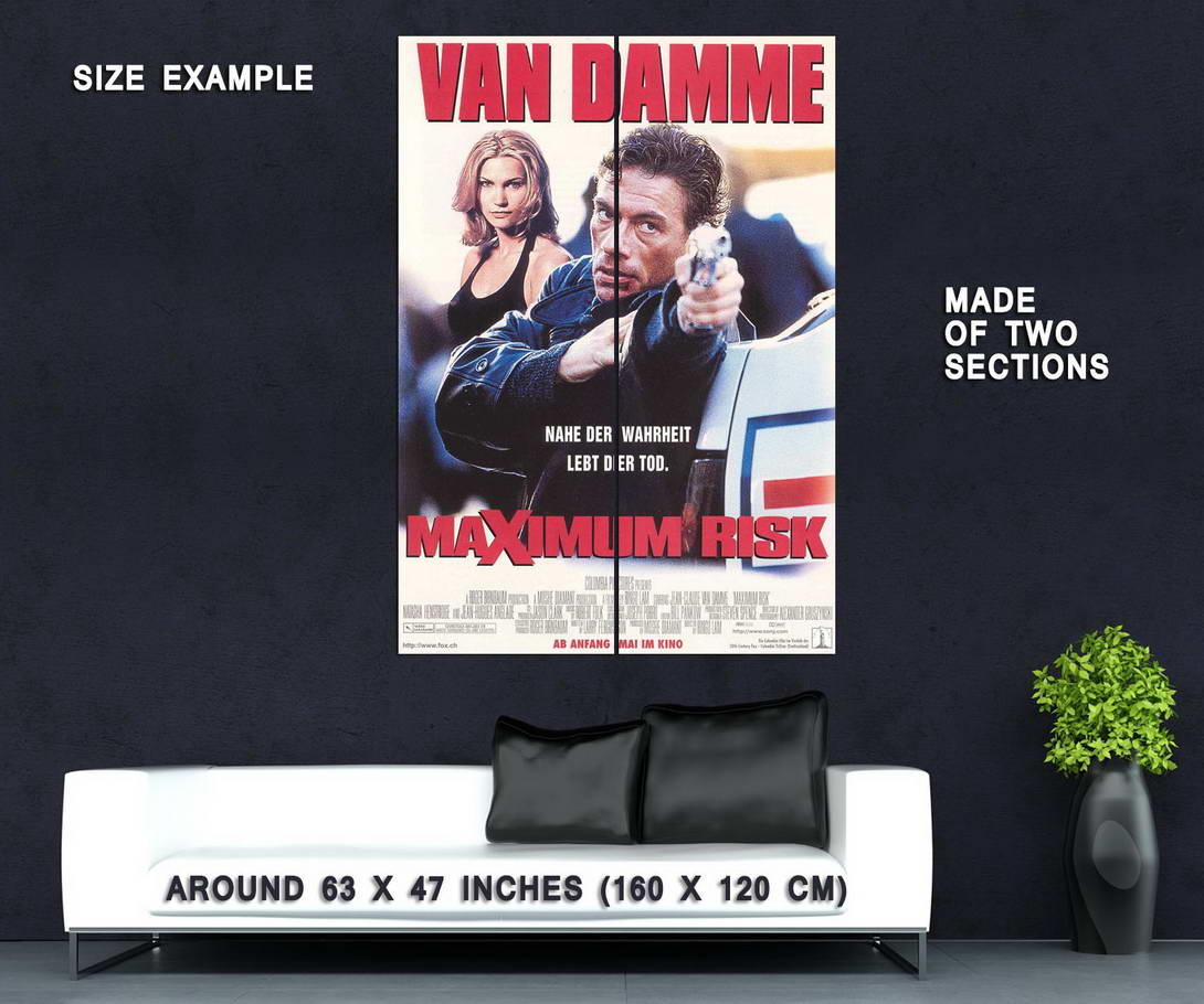 73900-Maximum-Risk-Movie-1996-Crime-Thriller-Wall-Print-Poster-Affiche