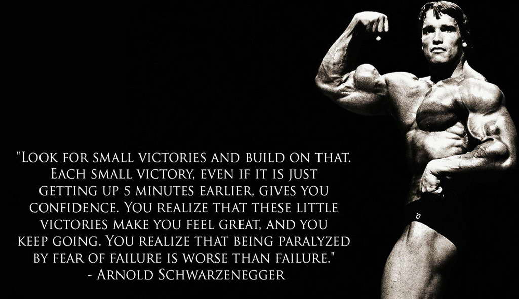 Delightful 11085 Arnold Schwarzenegger Motivational Bodybuilding Quote Poster