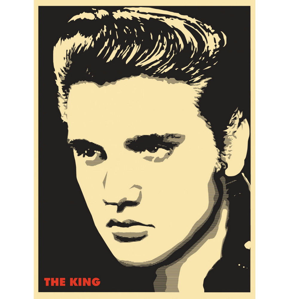 83137 Elvis Presley Rock and Roll Music Star Decor WALL PRINT POSTER ...
