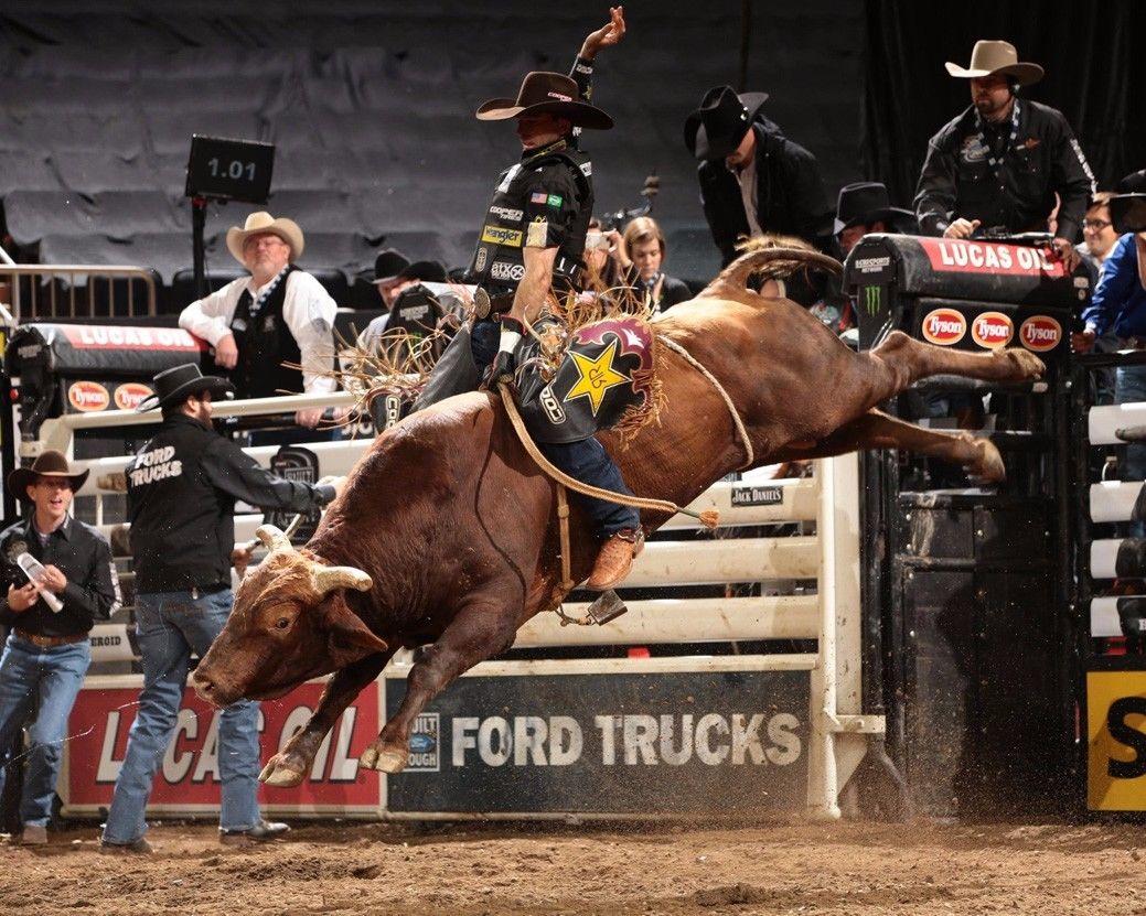 PBR Art Decor Wall Print Poster 154445 Professional Bull Riders