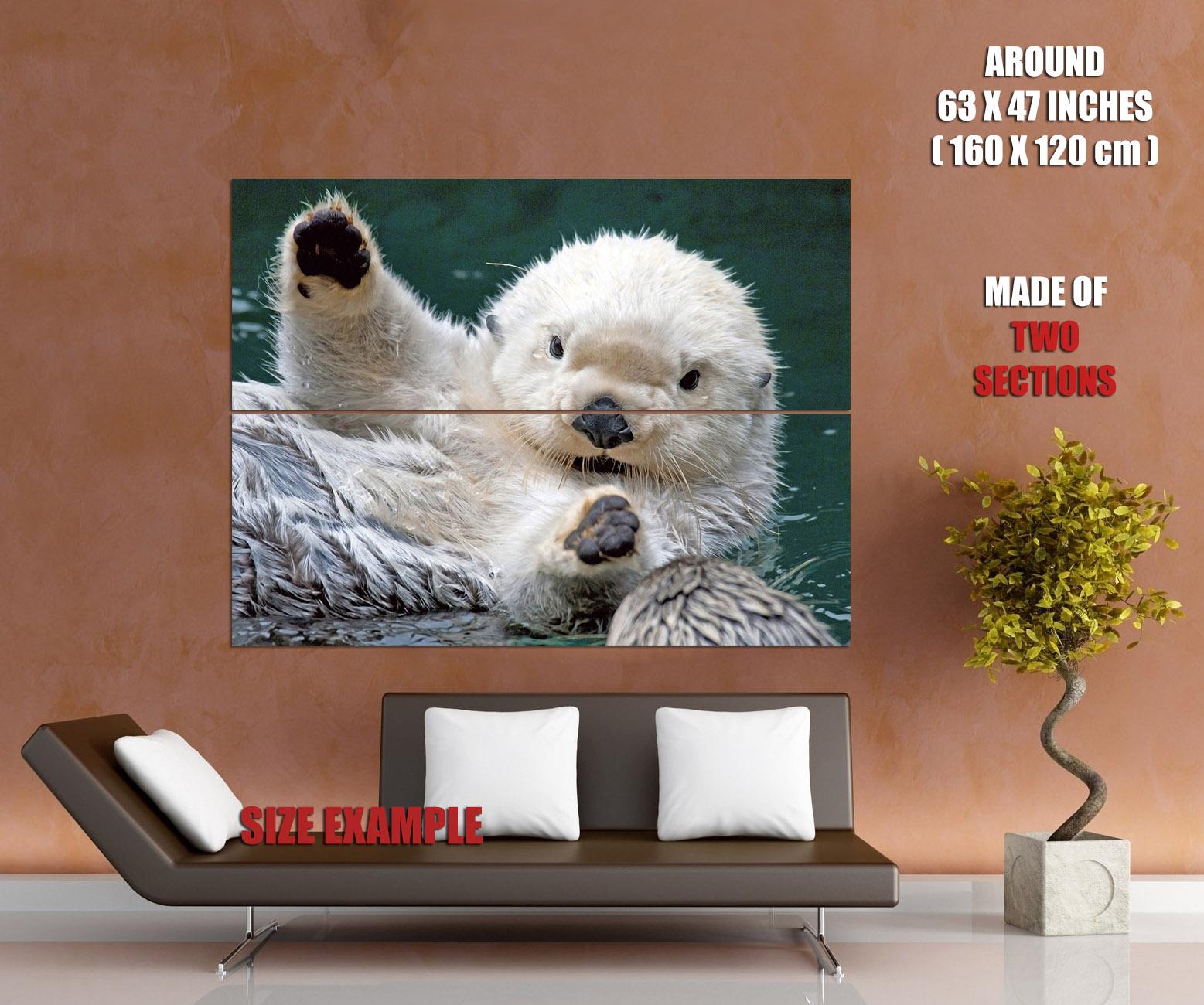 WHITE WET OTTER Cute Animal Print POSTER Plakat