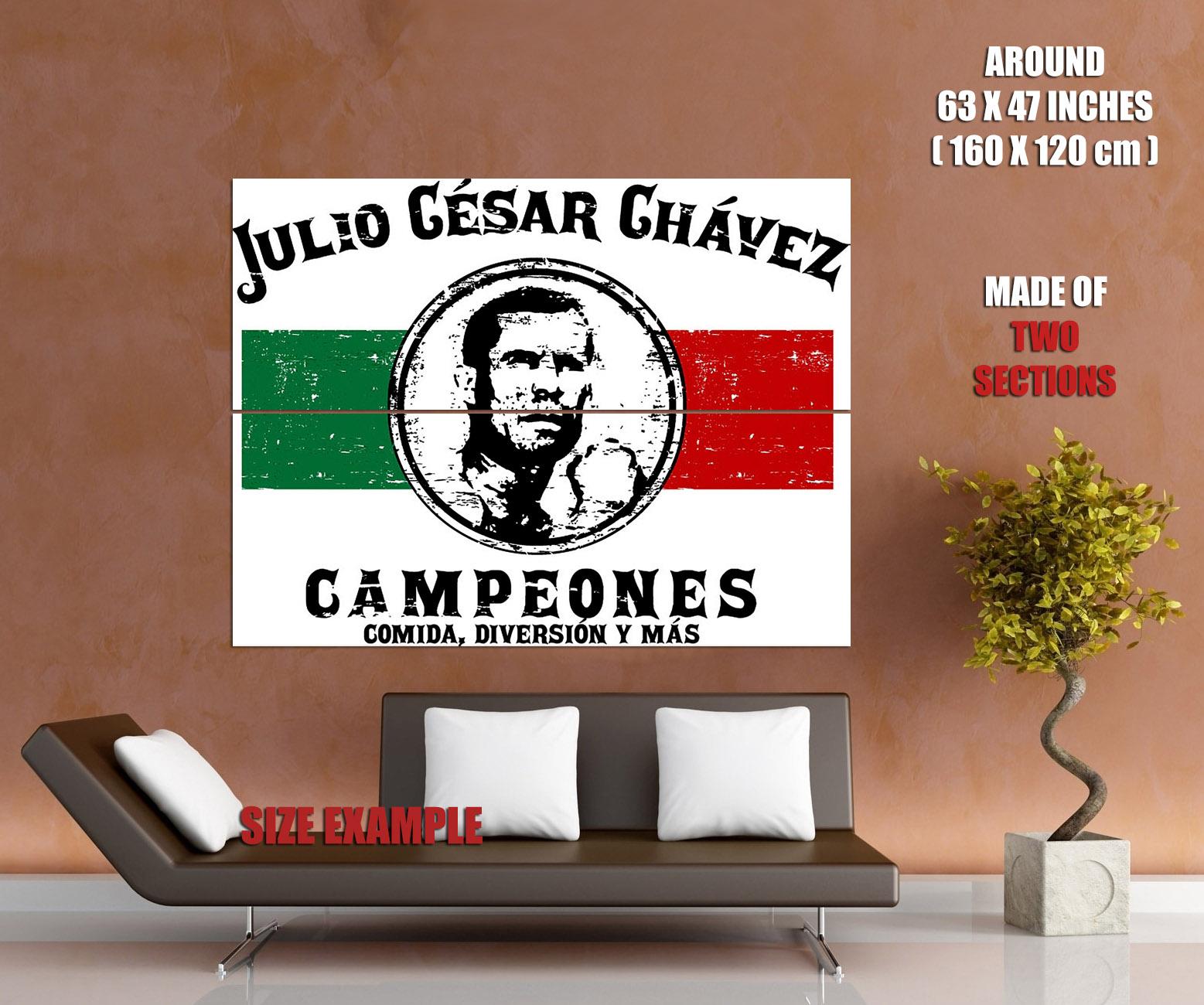 D8576 Julio Cesar Chavez Flag Boxing Sport Gigantic Print POSTER