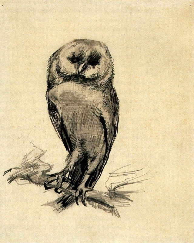 06255 VAN GOGH BARN OWL VIEWED FROM THE FRONT PRINT