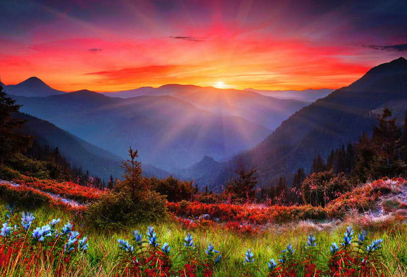 09915 Morning Sunrise - Mountains And Flowers Nature Art Wall Print POSTER AU