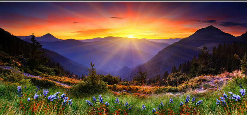 13266 Mountains Flower Sunset Nature Wall Print POSTER CA