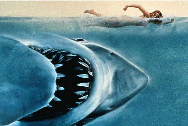 13722 Jaws Classic Movie Art Home atoin Wall Print POSTER CA