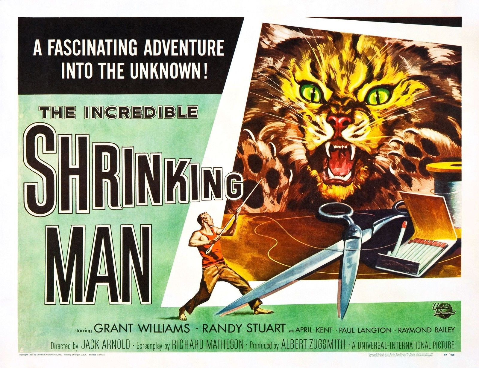73673-THE-INCREDIBLE-SHRINKING-MAN-Fantasy-Sci-Fi-FRAMED-CANVAS-PRINT-Toile
