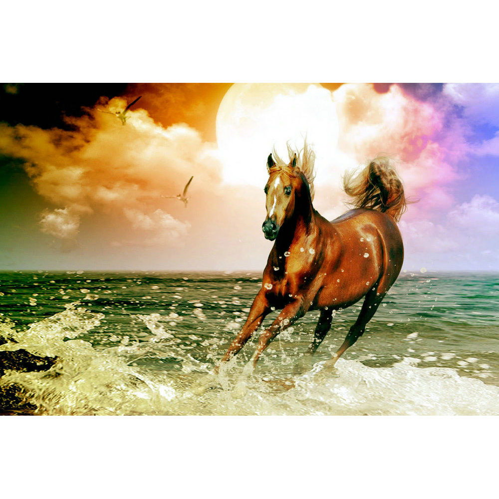 83373 Weiß Horse Galloping Sunset Landscape Decor WALL PRINT POSTER US
