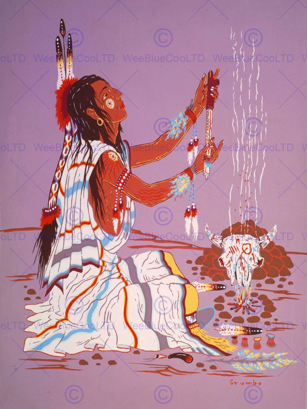 85280 DRAWING NATIVE AMERICAN INDIAN FIRE SHAMAN DRESS WALL PRINT POSTER US