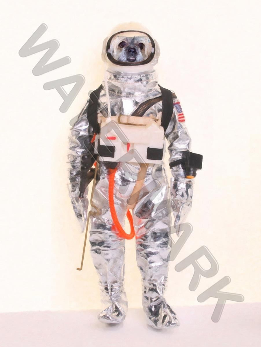 87846 SPACE DOG ASTRONAUT ONLY Decor WALL PRINT POSTER CA