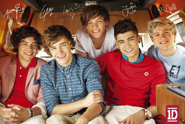 90991 ONE DIRECTION MUSIC ALL 5 BOYS SIGNATURES Decor WALL PRINT POSTER AU
