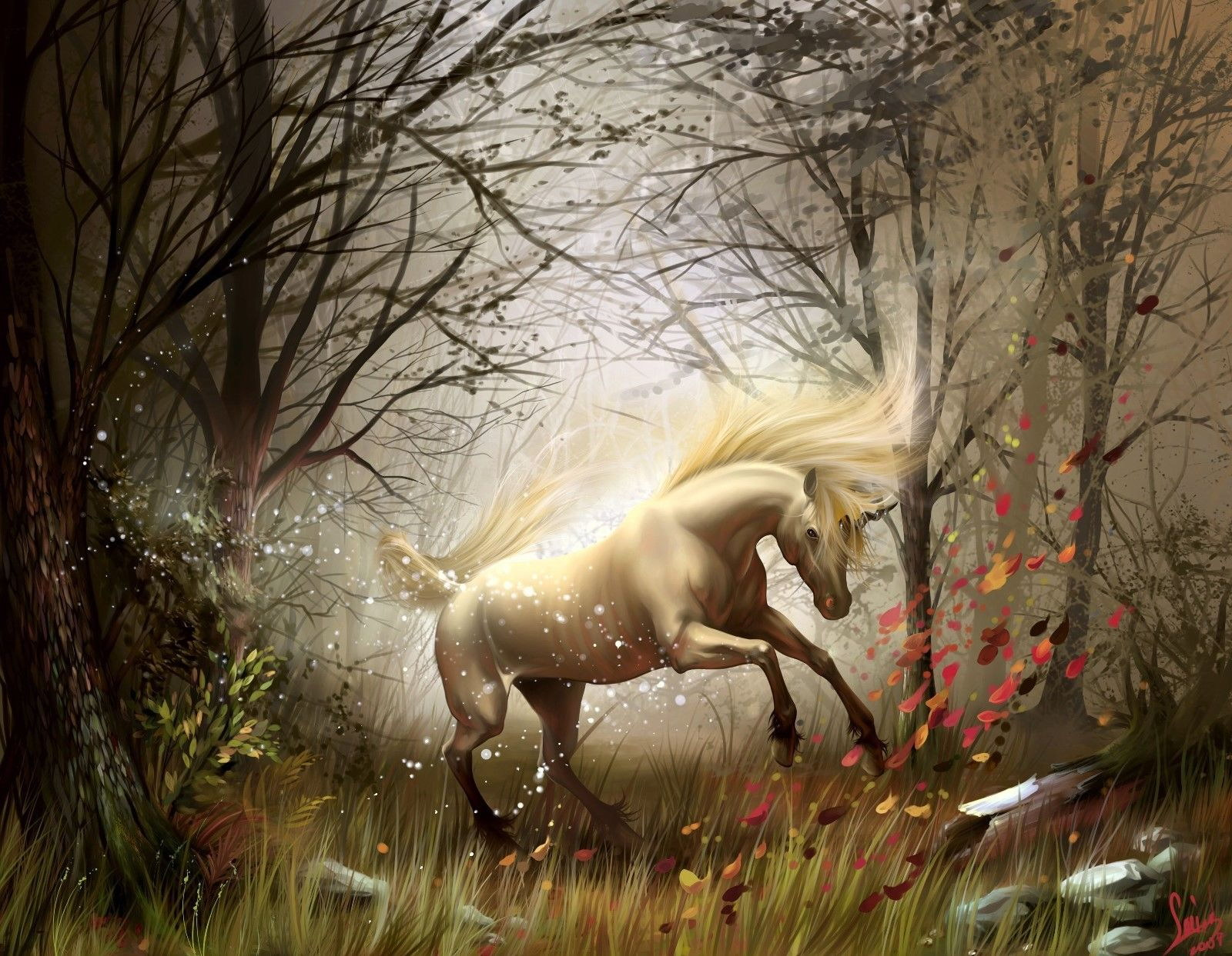 120357 Wild Horse Beautiful and un Decor WALL PRINT POSTER AU