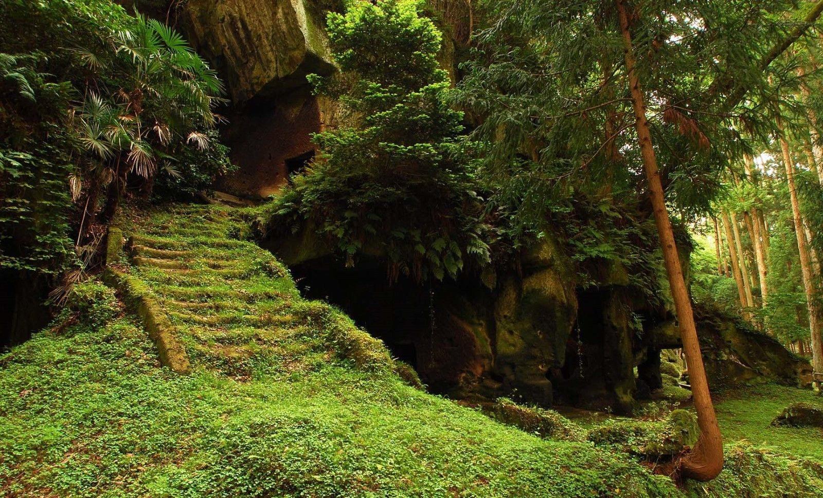 121362 verde Forest Rain Jungle Mountains Decor WALL PRINT POSTER AU