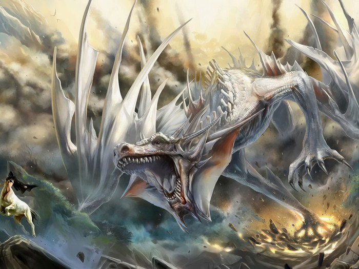 fantasy white dragon wall print poster au ebay