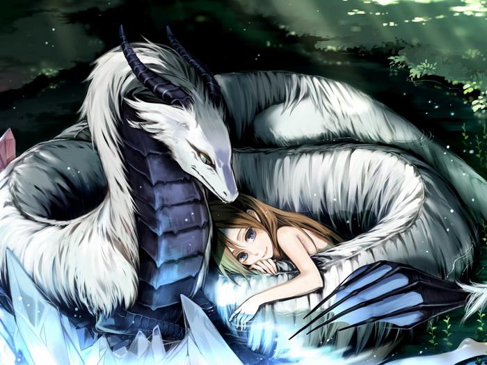 d2118 careful white dragon anime girl art gigantic print poster ebay