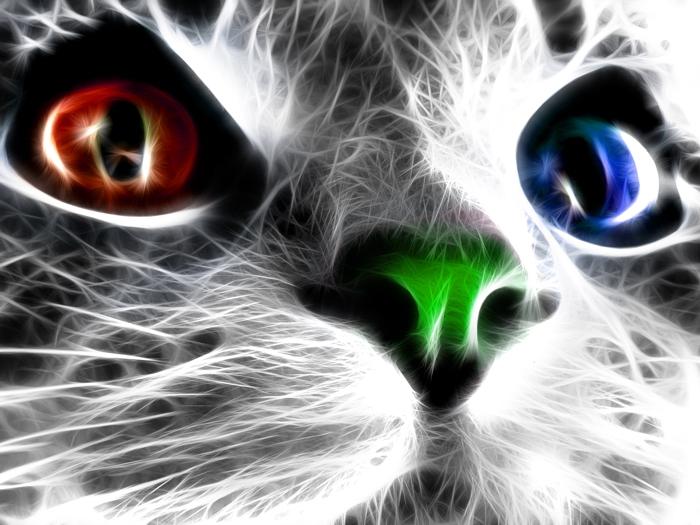 Fractal Cat Beautiful Art FRAMED CANVAS PRINT FR FR FR b880d3